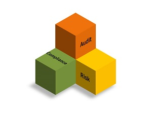 audit, risk, compliance committee logo